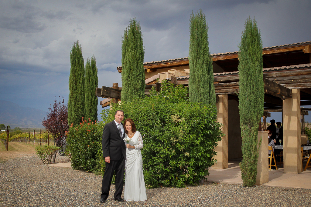 alcantara Vineyard wedding